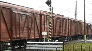 Встреча ВЛ80С-548 и ВЛ80С-533 о.п.Хороброво