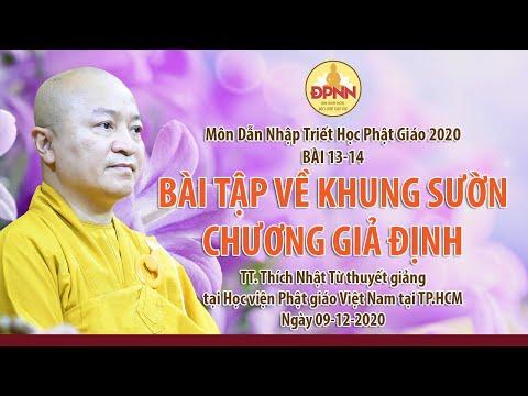 Bài tập về khung sườn giả định l Dẫn nhập triết học Phật giáo (bài 13, 14)