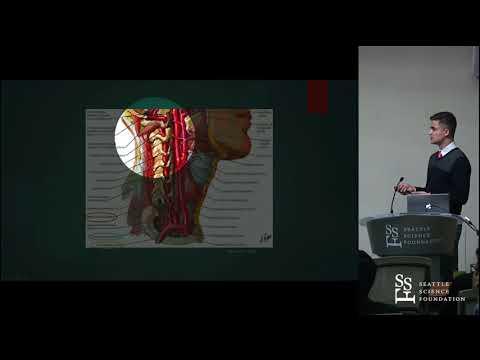 Zależność między tętnicą szyjną głęboką a kanałem odżywczym kręgu obrotowego