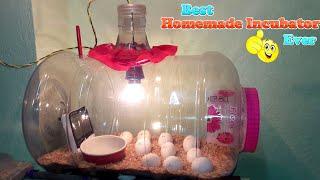 DIY-Homemade Incubator || Egg Incubator Results (Hatching Eggs)