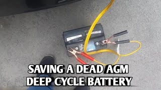 Restoring a Discharged  Deep Cycle Battery