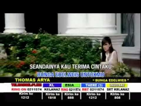 Video BUNGA EDELWEIS - THOMAS ARYA - [Karaoke Video]