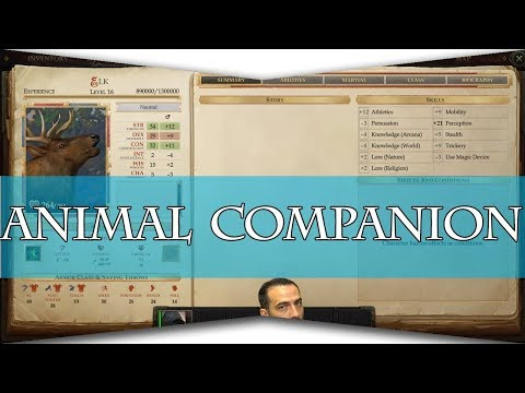 In Deqth Animal Companions :: Pathfinder: Kingmaker Guides and hints