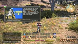 preview picture of video 'FINAL FANTASY XIV: A Realm Reborn - GAMEPLAY'