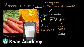 Introduction To Vitamins And Minerals | Biology Foundations | High School Biology | Khan Academy