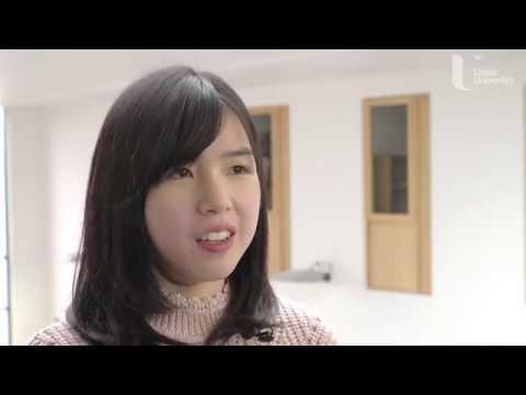 Cho King Ng (Miffy) profile image