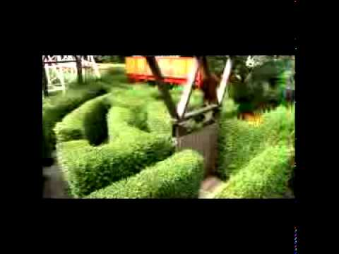 Chinese Puzzle Maze