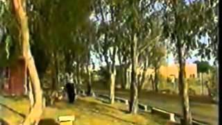 Husain Basri حسين البصري - شفتك بعيني تحميل MP3