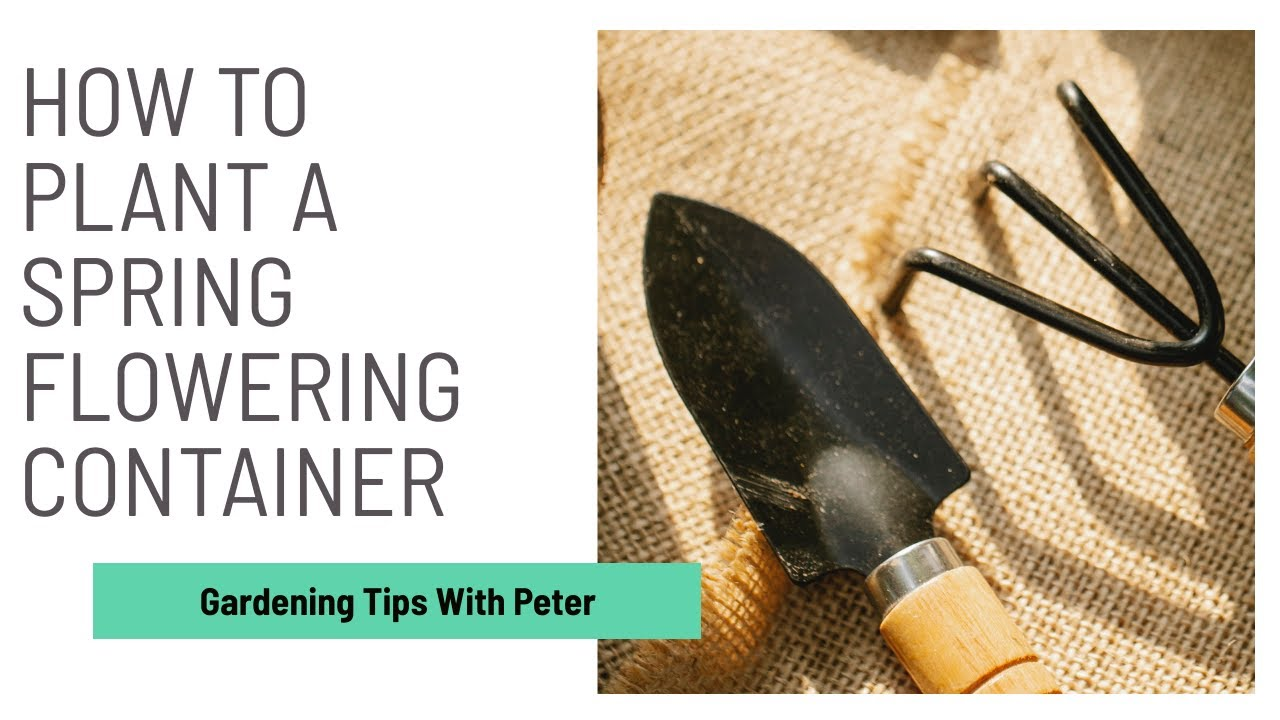 Planting a Spring Flowering Container