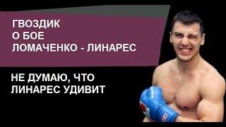 Александр Гвоздик о бое Ломаченко - Линарес