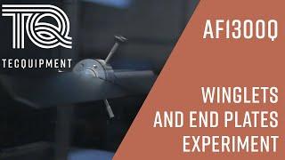 AF1300: Winglets & End Plates Experiments