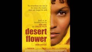 Desert Flower | National Geographic