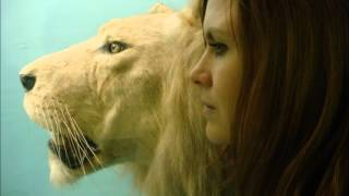Juliana Hatfield - Love is Like the Wind (Wild Animals)