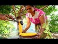 Sri Lanka Village Food - JACKFRUIT CURRY in Sigirya! Eating SRI LANKAN Food in a Tree House!!