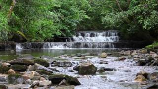 Nature Sounds with Classical Piano Music with Birds Singing & Soothing Sound of a Calming Waterfall