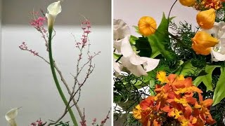 Ikebana Exhibition in Nihonbashi ᴴᴰ ● いけばな展示会 日本橋