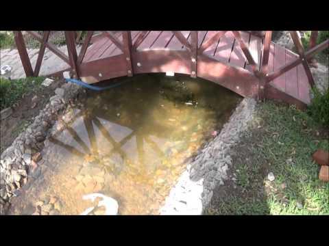 jardin y estanque   MILTON