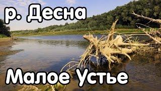 Рыбалка в черниговской области
