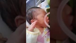 Download Video Asi pertama (baby irsyad) MP3 3GP MP4