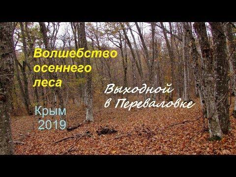 Крым, Судак, Выходной на природе. Листопад и волшебство осеннего леса