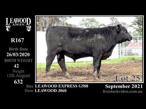LEAWOOD EXPRESS R167
