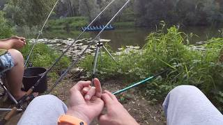 Рыбалка река нара литвиново