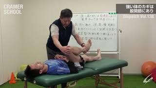 強い体のカギは股関節にあり