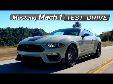 Mustang Mach 1 Review - Special Edition Enough? - Test Drive | Everyday Driver