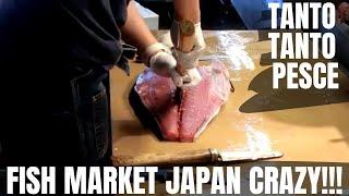 INSIDE A FISH MARKET IN JAPAN