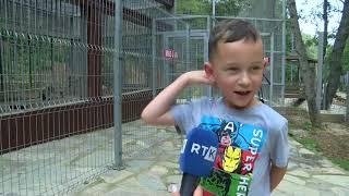 Vera RTK - Reportazh nga Maja e Zezë Stanqiq, Gjilan 07.08.2020
