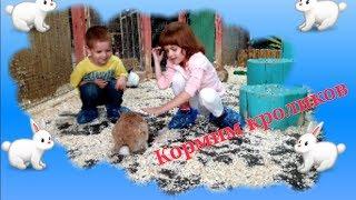 Дети кормят животных . Часть 3. Козлики Чук и Гек и кролики.