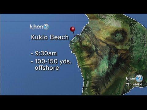 Man critically injured in shark attack on Hawaii Island