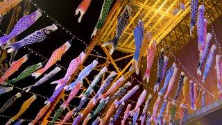 333匹の「鯉のぼり」と巨大「さんまのぼり」!3月29日(金)から、東京タワーの麓で元気に泳ぐ!!