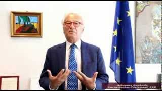 Johannes Swoboda - European Parliament - S&D Fraktion