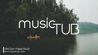 We Don't Need Much   Bird Of Figment Feat. Emmi [Acoustic Group Music]