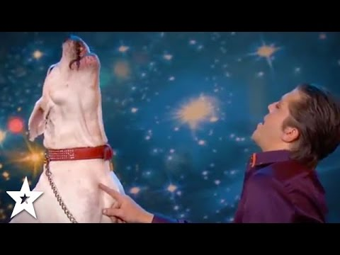 A SINGING DOG Takes On Whitney Houston! | Got Talent Global