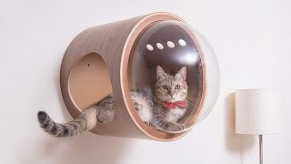 Amazing Pet Gadgets You Must Have