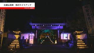 【アミンチュニュース】西教寺紅葉ライトアップ