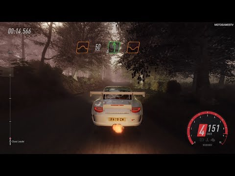 DiRT Rally 2.0 - Porsche 911 RGT Rally Spec - Germany Rally Gameplay [4K 60FPS]