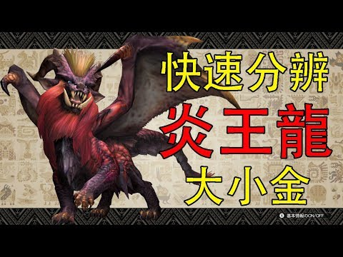 【MHW】快速分辨炎王龍大小金之魔物獵人世界
