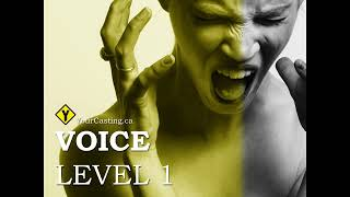 The Power of Voice & Acting with Your Voice!! Voice Over Classes - Your Casting Academy