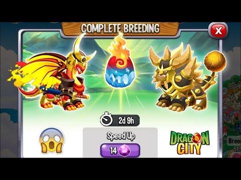 Dragon City: Bjorn Dragon vs Katsumoto Dragon [EXCLUSIVE BREEDING] 😱