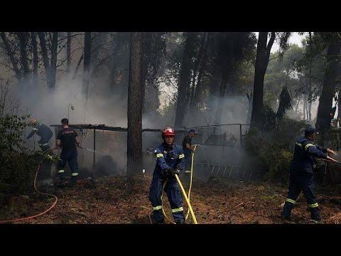 Βαρυμπόμπη: Δεκάδες καμένα σπίτια, επιχειρήσεις, οχήματα- Οδοιπορικό του Euronews…