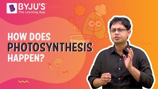 CH06-PHOTOSYNTHESIS-PART01-HISTORY OF PHOTOSYNTHESIS