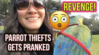 PRANKING PET THIEVES THAT WANTS TO STEAL MY BIRD!