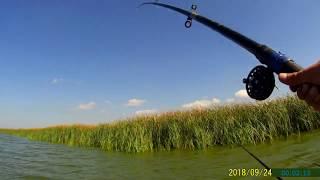 Рыбалка на ахтанизовском лимане с берега