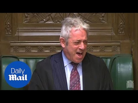 John Bercow demands 'order' after Labour MP shouts 'ahoy there!'