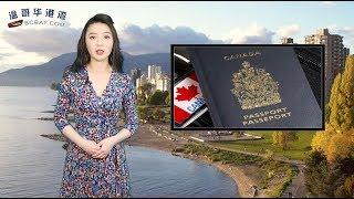 """厉害了!2019加拿大护照排名再创新高     生育旅游引不满   隐秘中国产妇""""婴儿房""""被曝光     在华人最爱的Costco,你一定要注意这件事(《港湾播报》20190107)"""