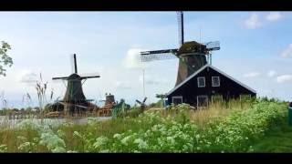 世界又飛啦:荷蘭之旅(第八集)- 阿姆斯特丹鬱金香與風車 (featured By 《太平洋之旅》)