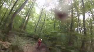 preview picture of video 'Forêt sur Gueret'